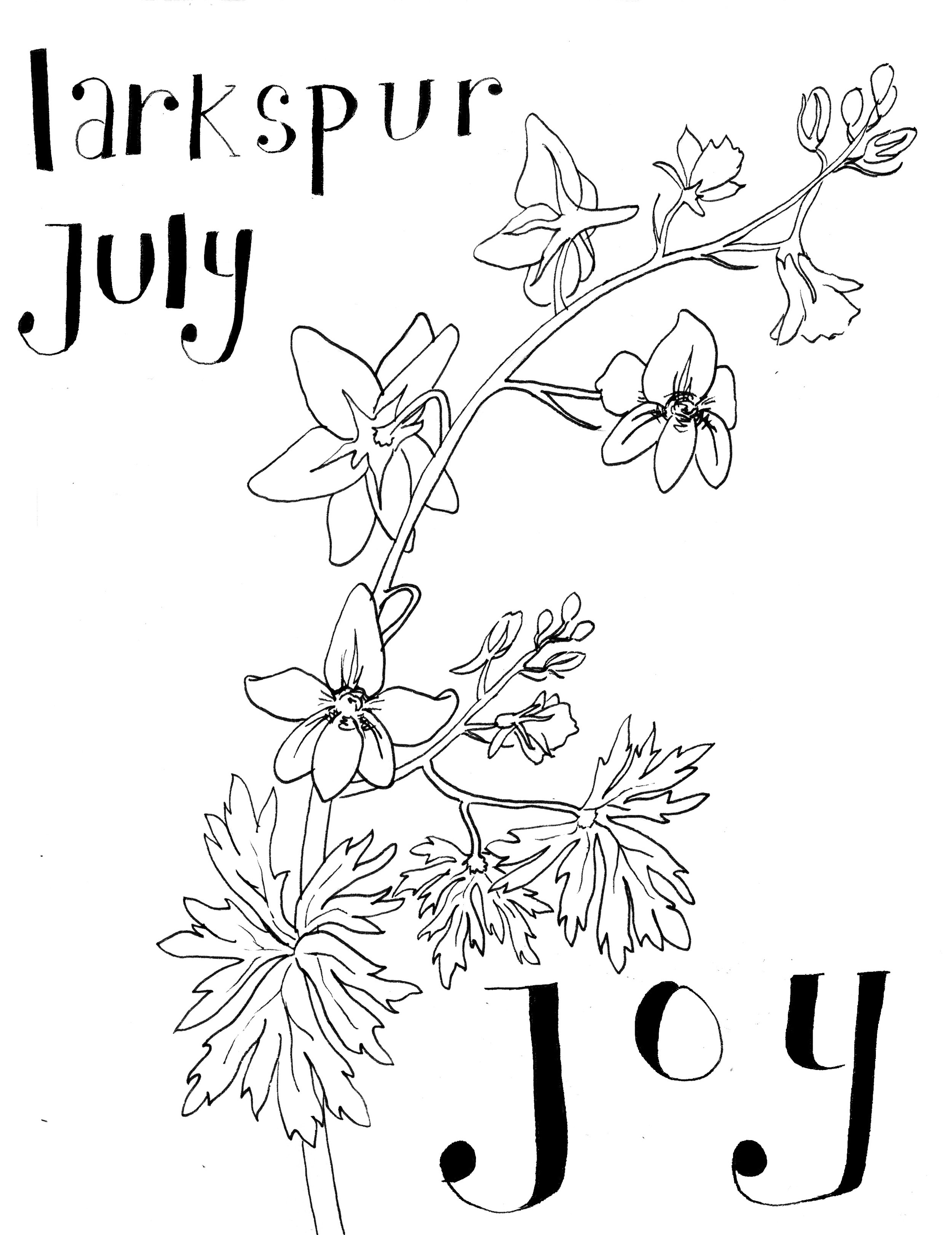 Final July Larkspur with words.jpg