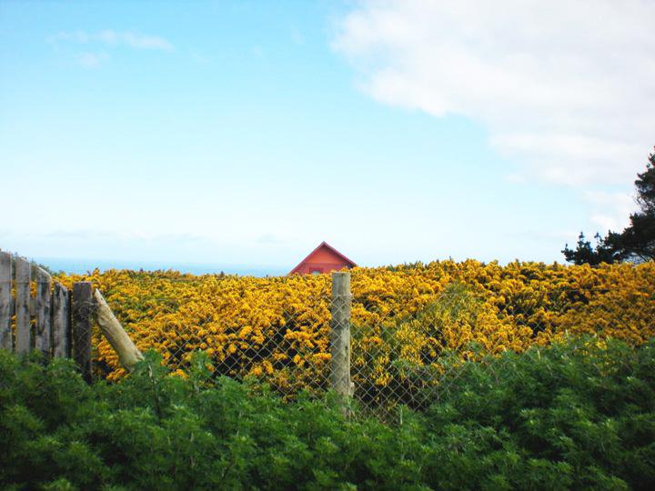 Temuco, Chile - 2010