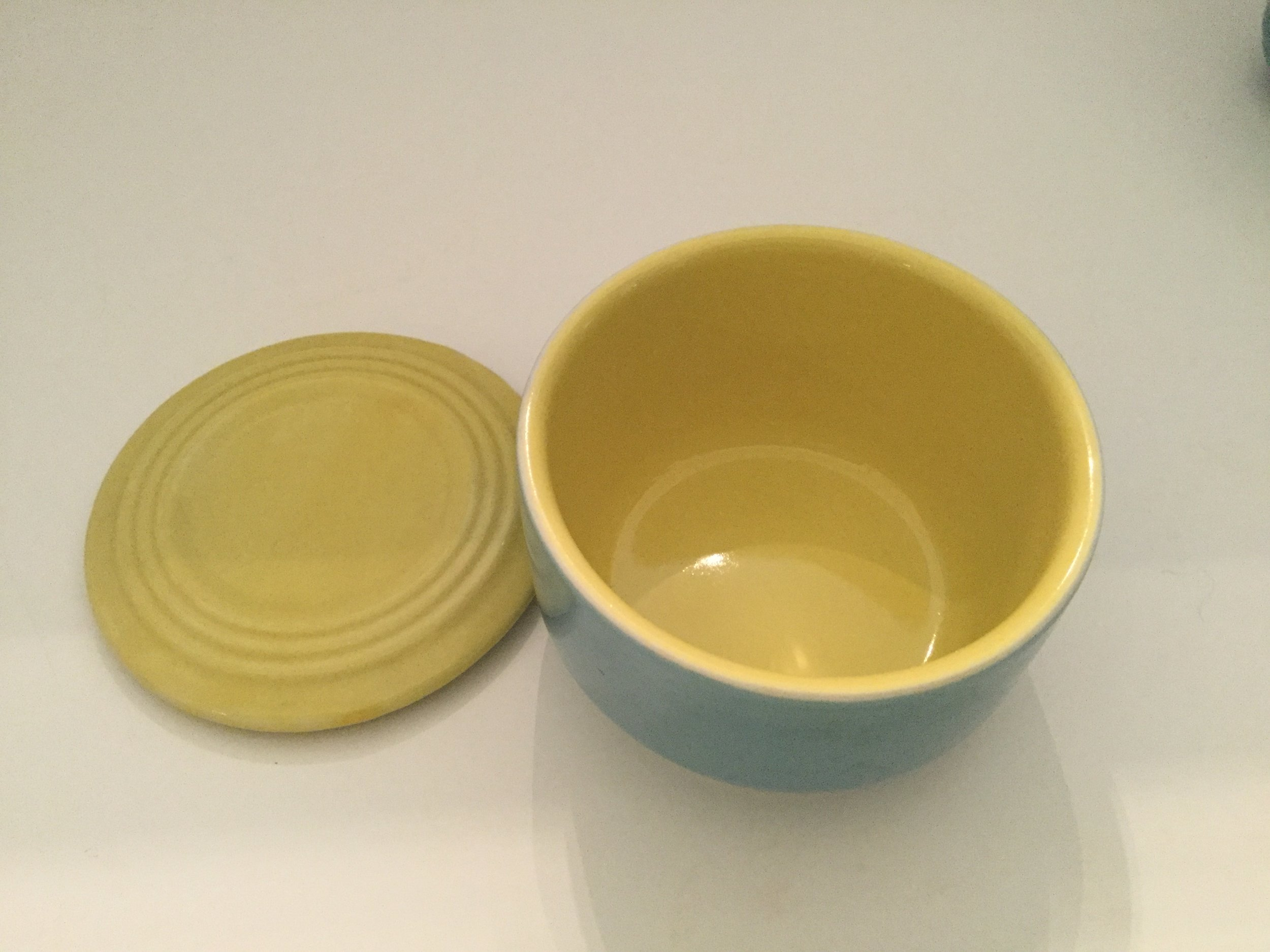 The refrigerator dishes have yellow interiors