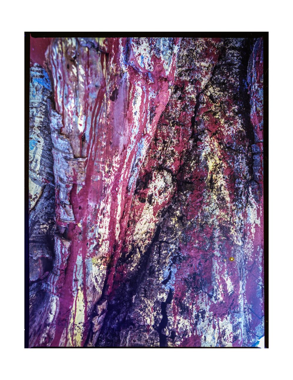 scans color008.jpg