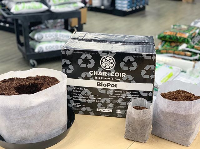 Been wondering what's up with the @charcoir #BioPots? They're a full package: compressed coco and container in one. Just hydrate and go! And with increasing sizes it's easy to transplant directly into a larger pot when necessary. Check them out if you haven't already, and let us know what you think 🥥🌴 - - - - #bloomgardensupply #charcoir #coco #cococoir #pdx #pdxgrowers #hydro #grow #gardening #indoor #outdoor #greenhouse #growyourown #growlocalbuylocal