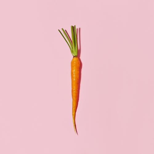 Carrot pink.jpeg