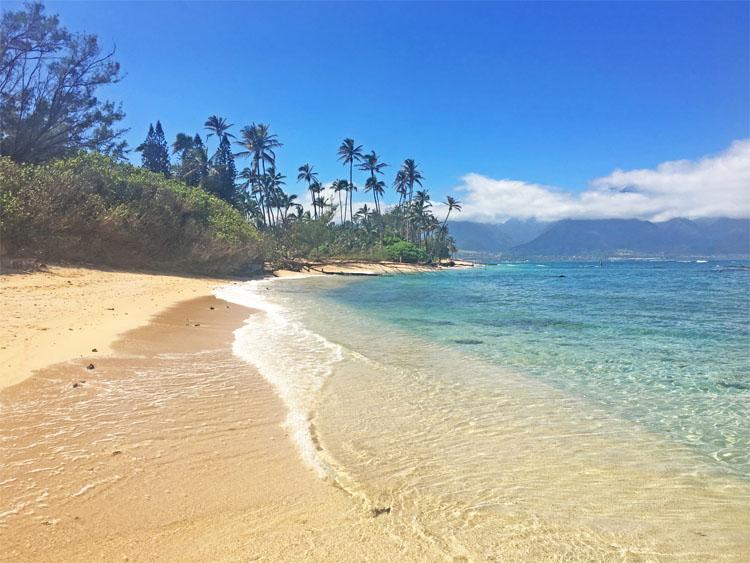 Central Maui Beaches