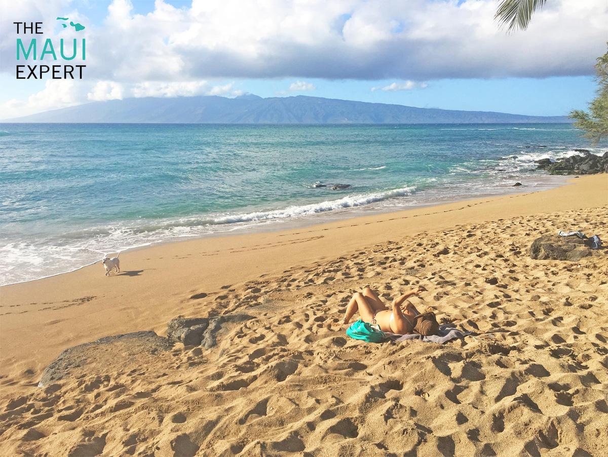 Pohaku Beach Park S Turns Maui