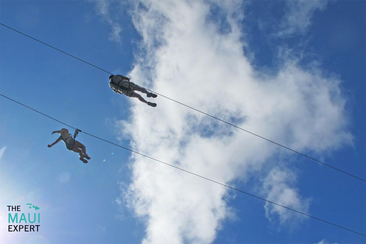 Ziplining On Maui.jpg