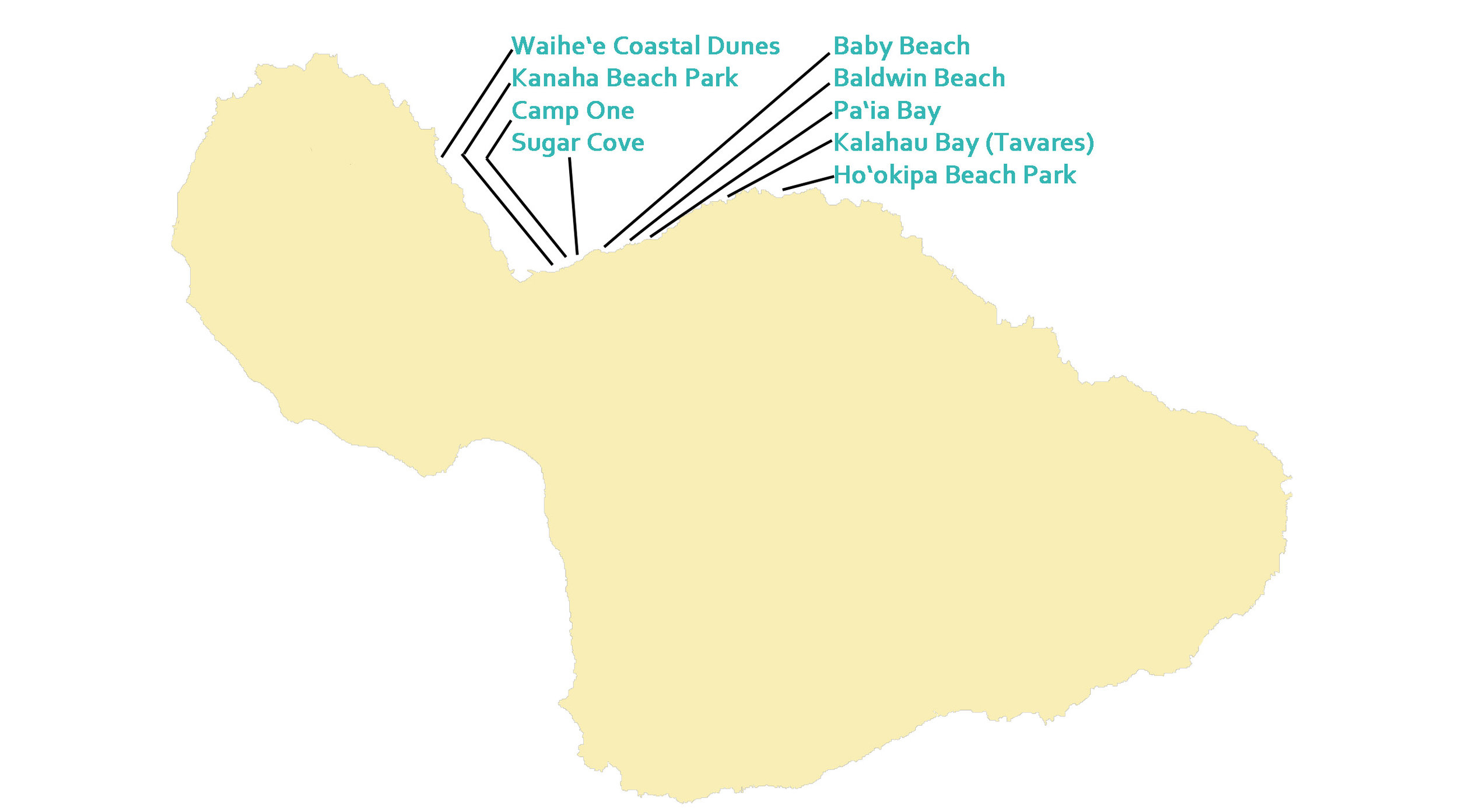 Central Maui Wide Beach Map.jpg