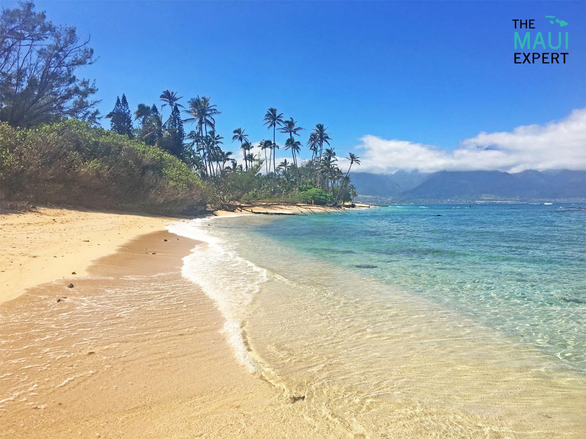 Camp One Beach Maui.jpg