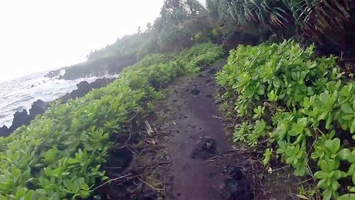 Coastal Trail Thumb.jpg