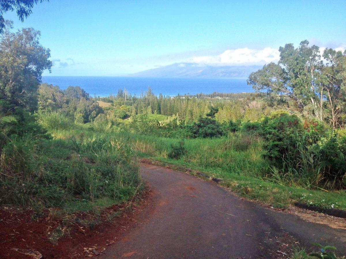 Kapalua Village Trails.jpg