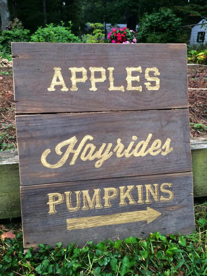 appleshayridespumpkins.jpg