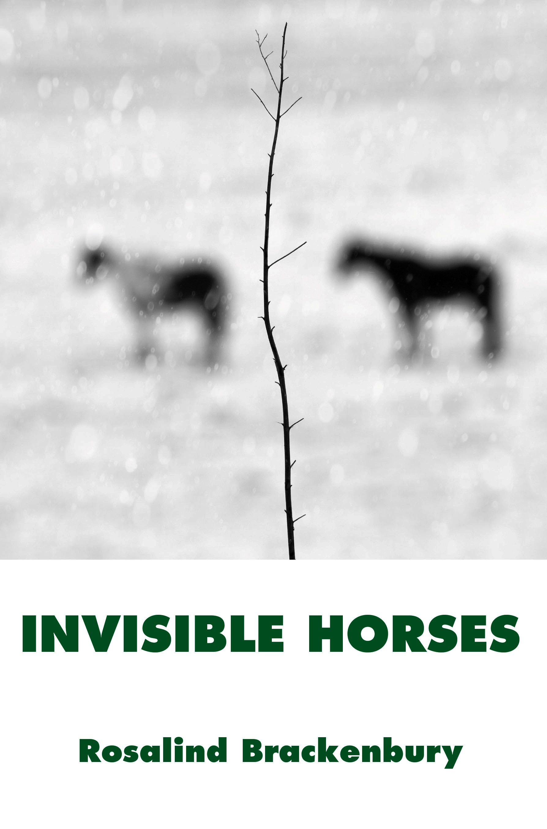 Invisible Horses Brackenbury Cover.jpg