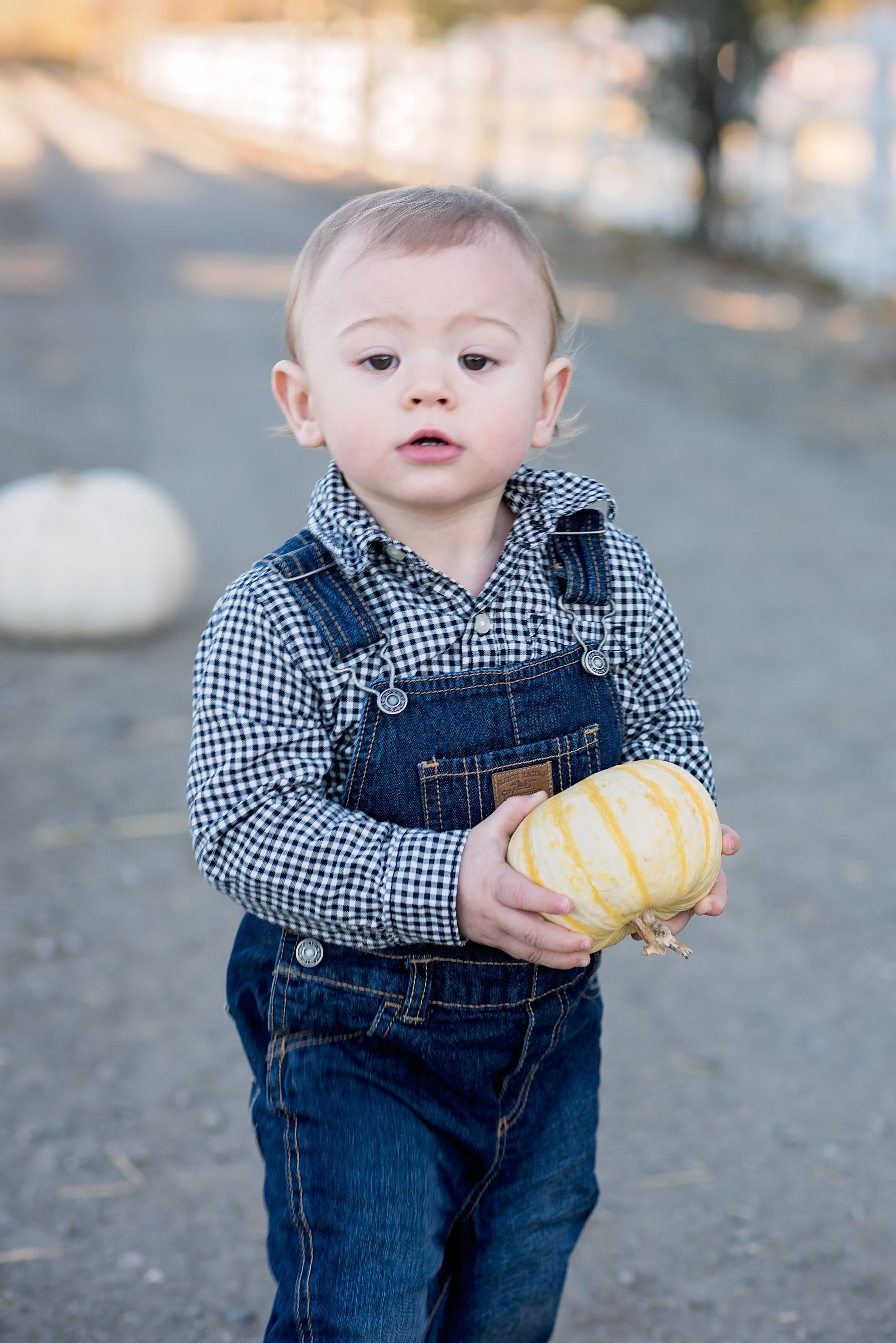 Monterey Country Children's Photographer