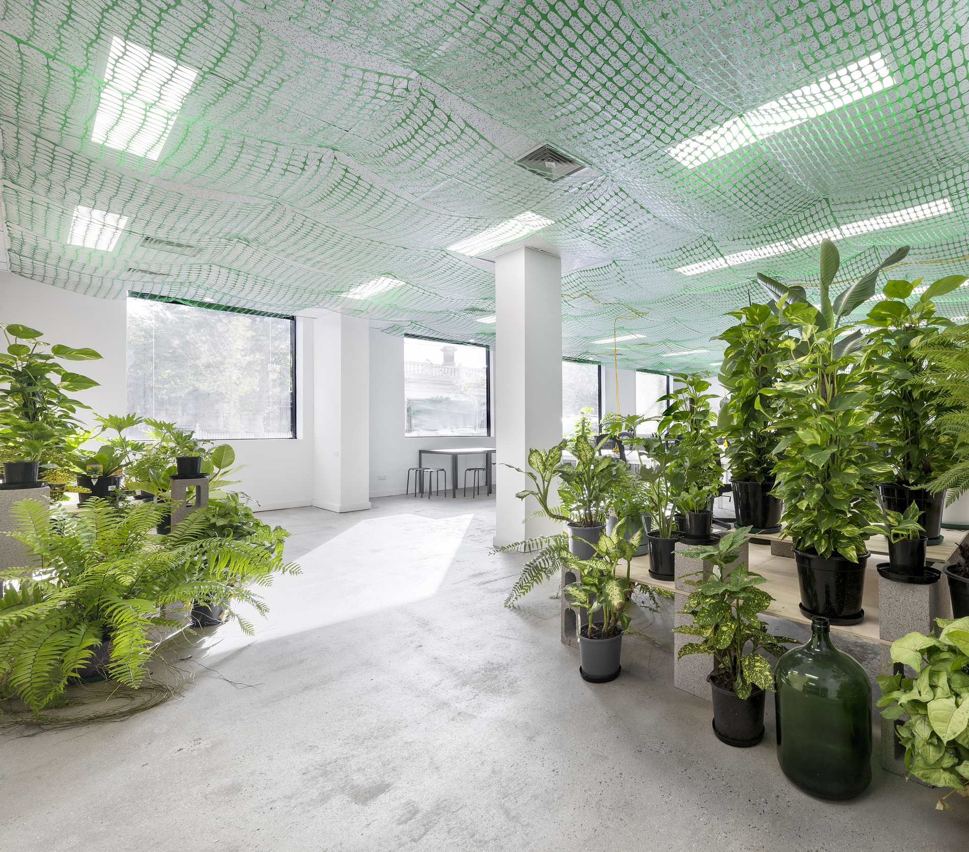 Co-working.Boardroom Hire.Business Mailing Address.1/430 Rae Street, Fitzroy North, VIC 3068, Australia - We're in business to help you connect community, business and environmental well-being.