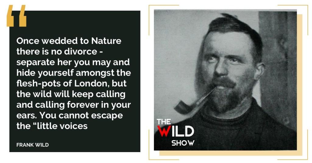Wild-Quote.jpg