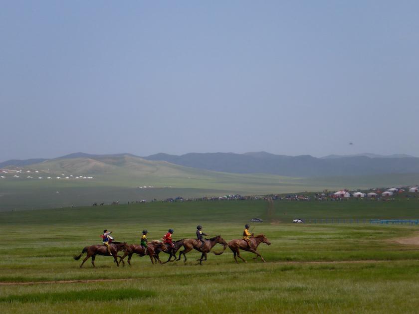Lilly-Wild-Soyolon-Horse-Racing.jpg