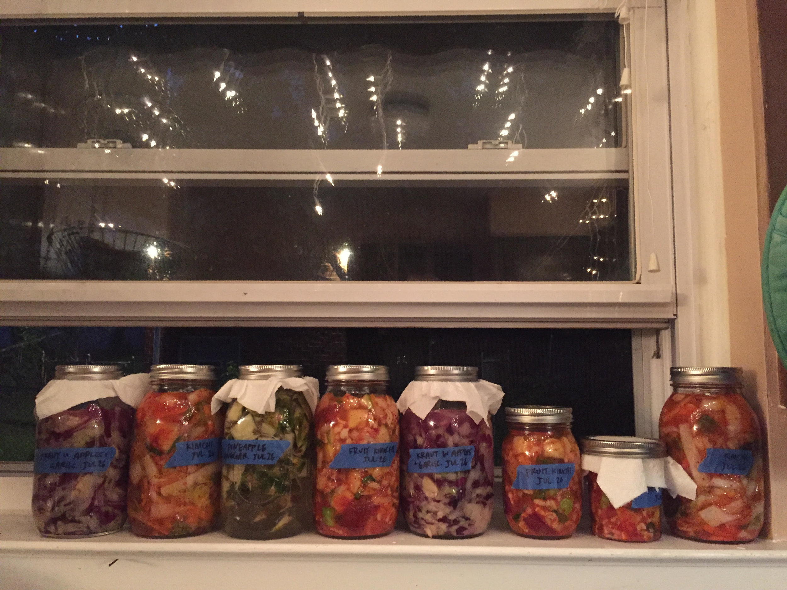 My kitchen, July 2016: sauerkraut, pineapple vinegar, cabbage kimchi, and fruit kimchi.