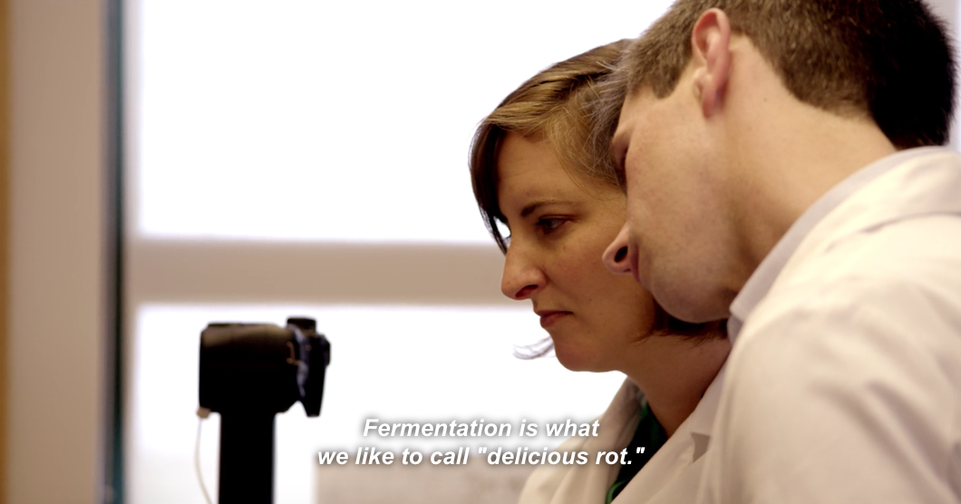 Still from Michael Pollan's  Cooked , wherein microbiologists at Tufts University look into the structure of fermented foods.