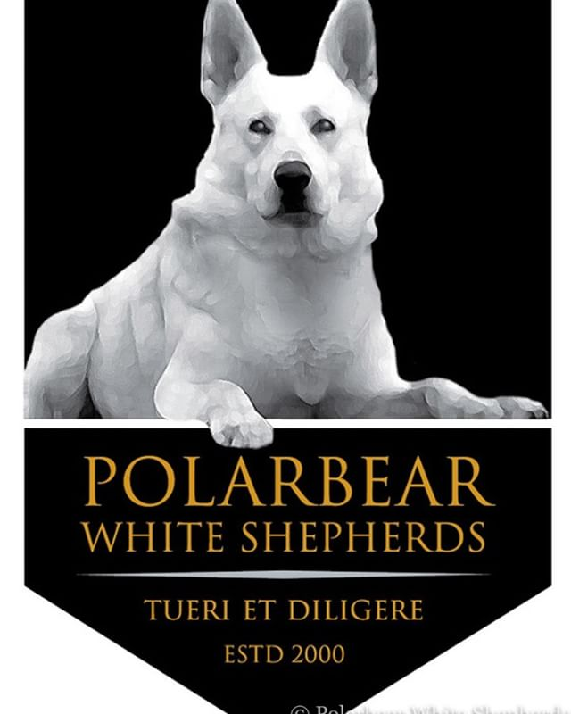 Our Logo featuring Polarbear's Wicket!