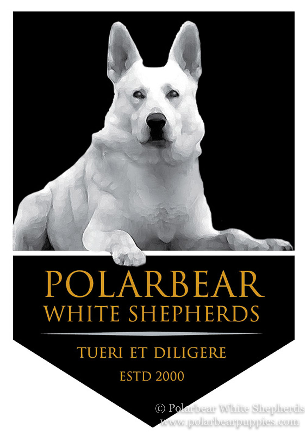 Polarbear White Shepherd Dog