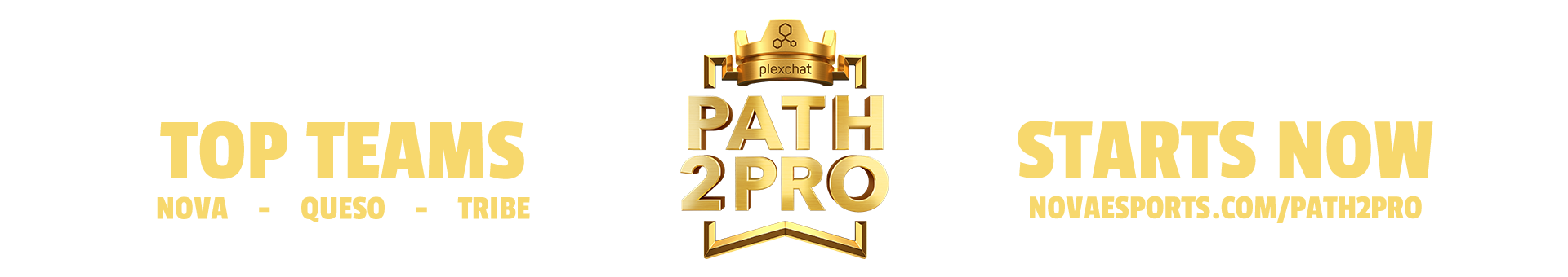 path2pro header.png