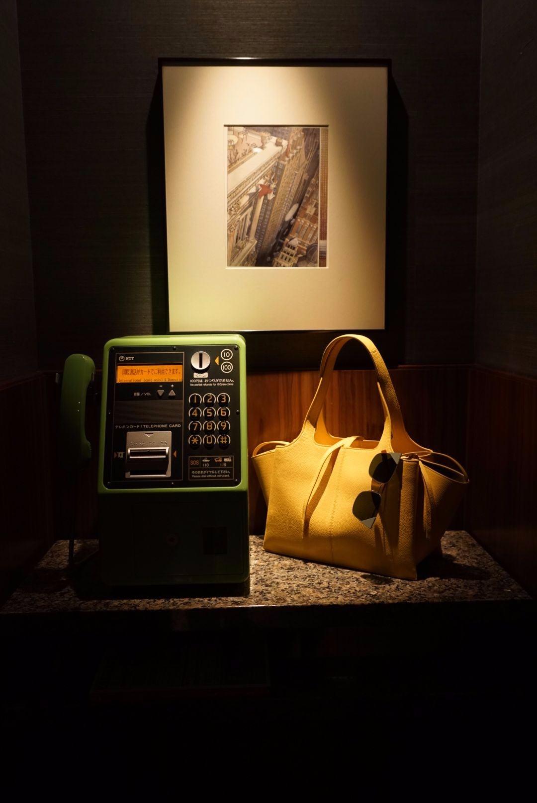 Celine Bag Tokyo - Unedited.jpg
