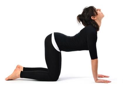 Yoga-Poses-Cat-cow-Back-Stretch-Pose.jpg