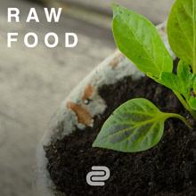 Raw Food Spotify Playlist
