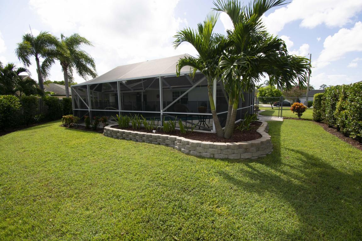 BW backyard.jpg