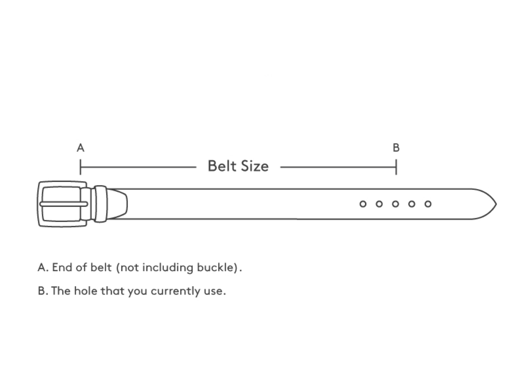 - How to Measure for a Belt Size:The best way to measure for your size belt is around your body where you wear the belt. That is the size belt you need to order.If it is an odd number, round up to the next even number.Belts are measured by length from where the buckle meets the leather, to the middle hole.The rest of the belt is not considered for measurement purposes. Do not include the buckle length in your measurement.Please note, belt sizes ARE NOT measured from end to end. You will not get the correct size that way.