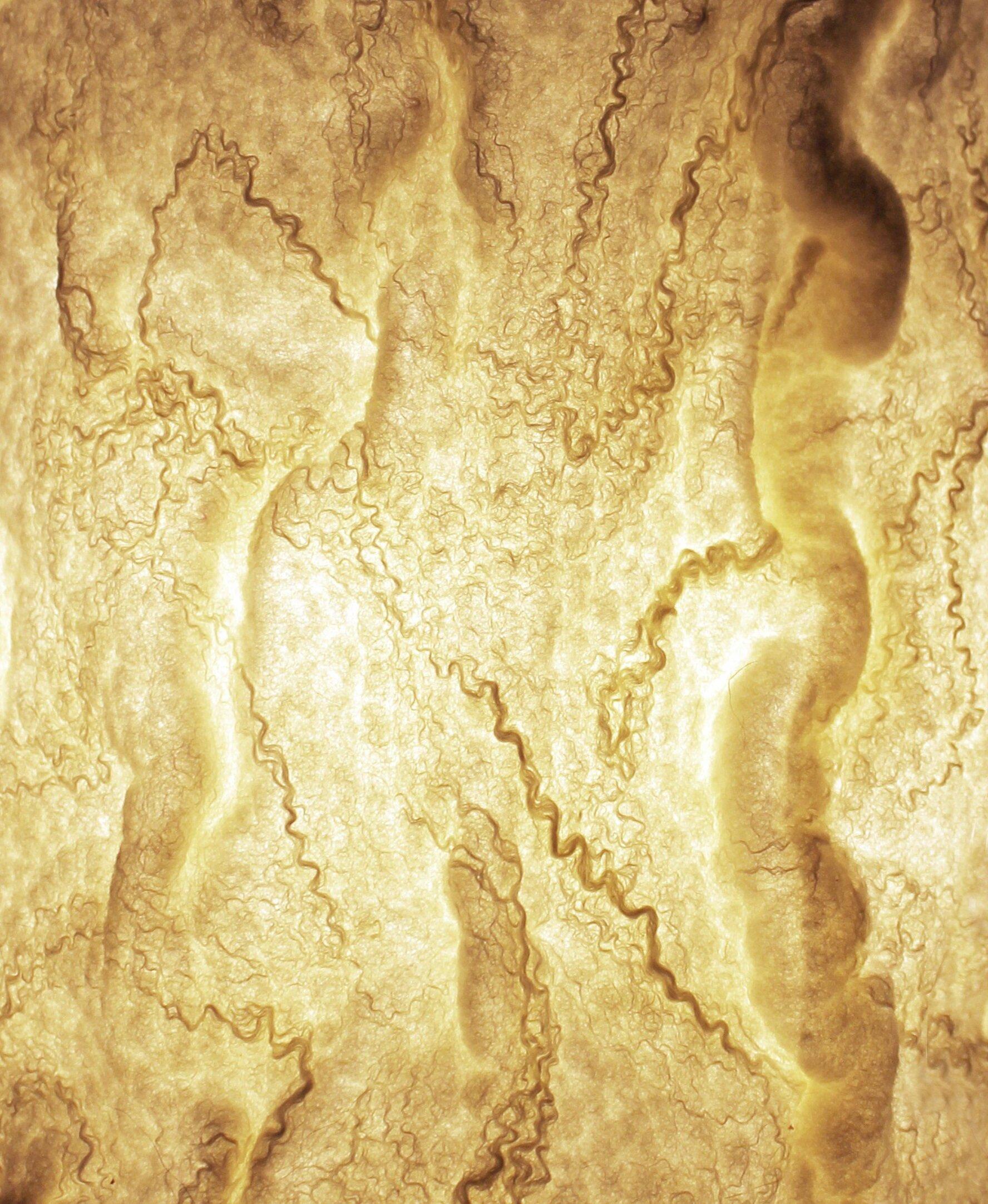 Soft Bark shade Detail.jpg