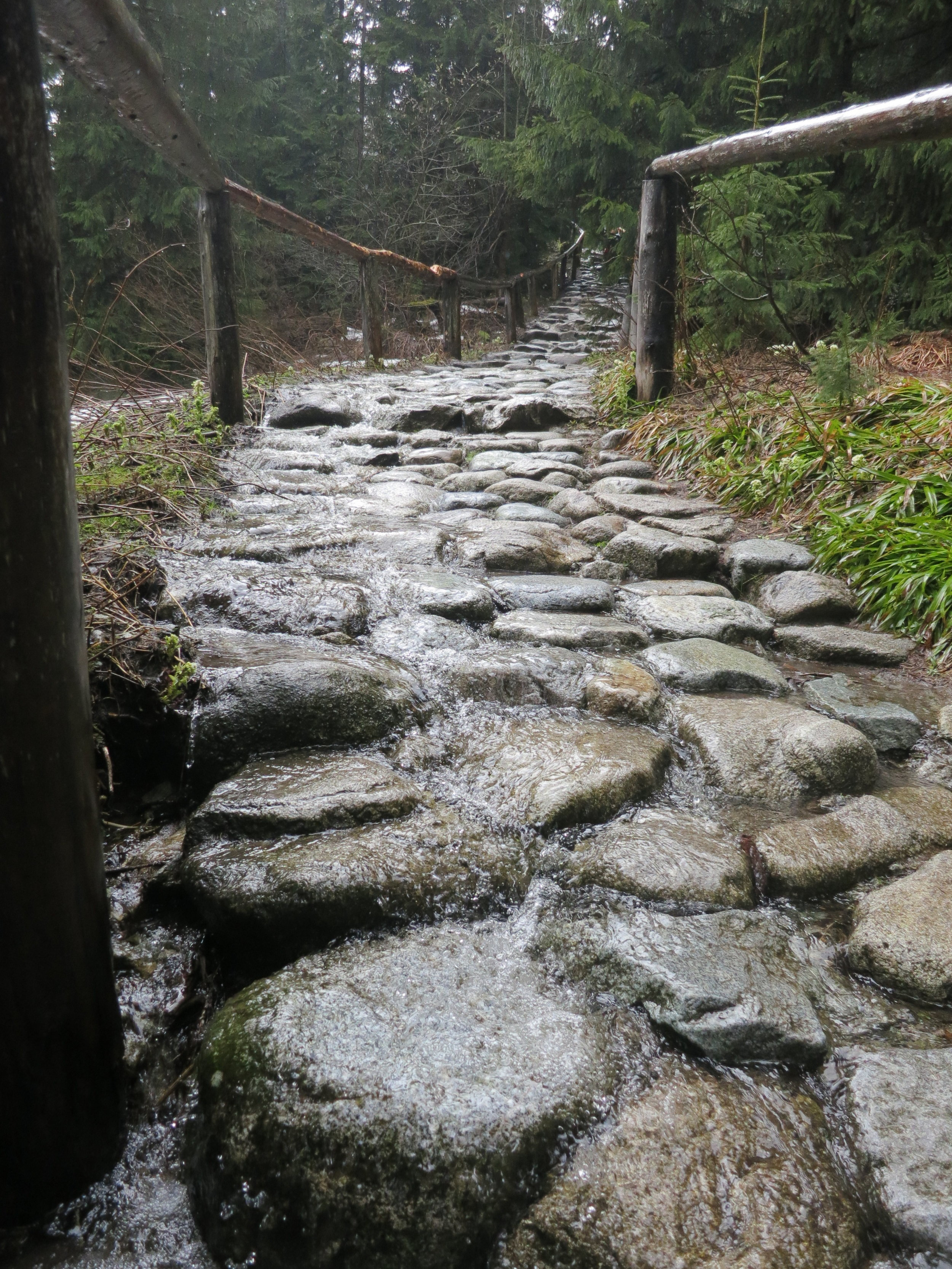 Water spilling over the path in the Tatras in Spring.
