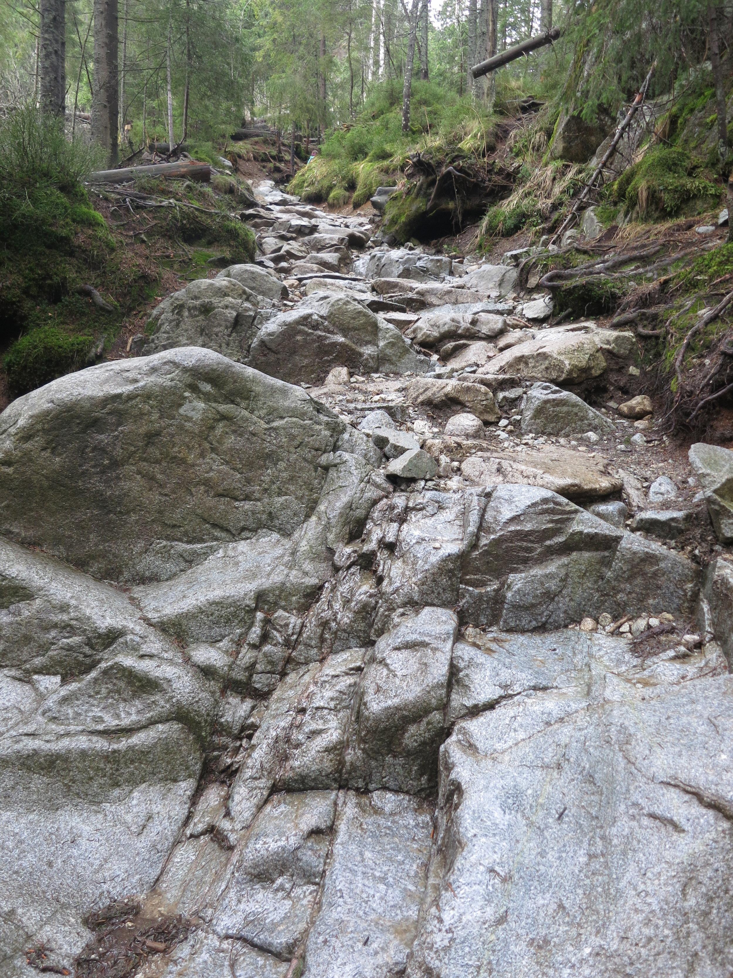 The path on the hike to Dolina Pięciu Stawów