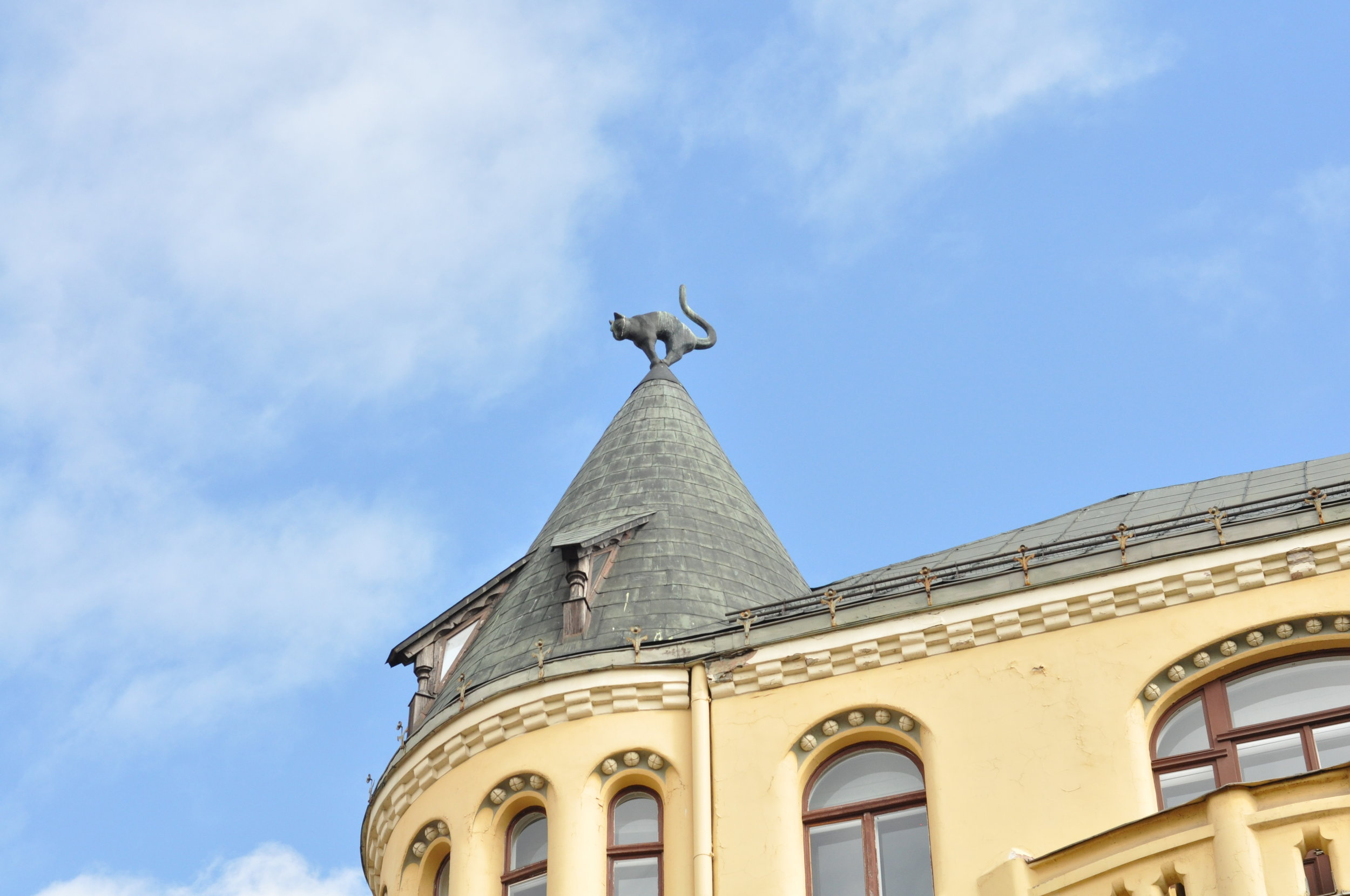 Cat on the Roof in Riga, Latvia