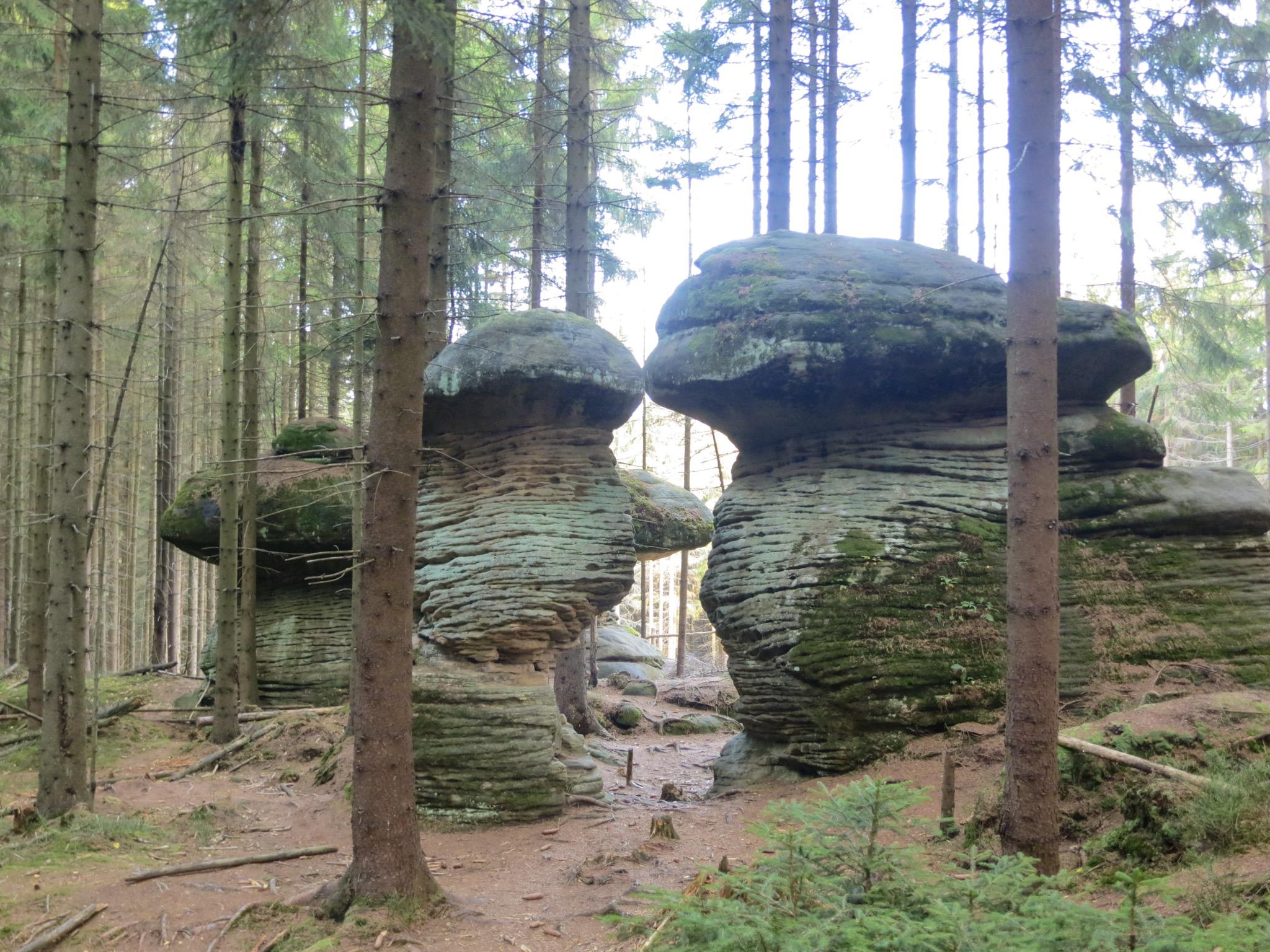 Mushroom Rocks, Stołowe Mountains, Poland
