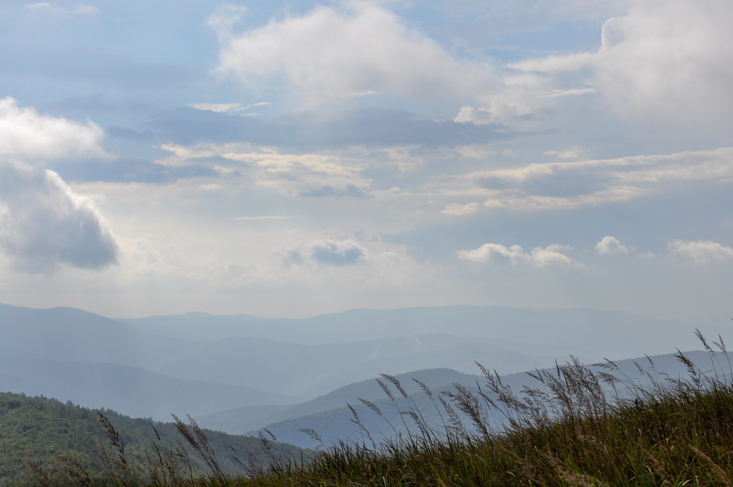 Views of mountains and valleys on the Tri-Border hike in the Bieszcady Mountains with grass in the forefront