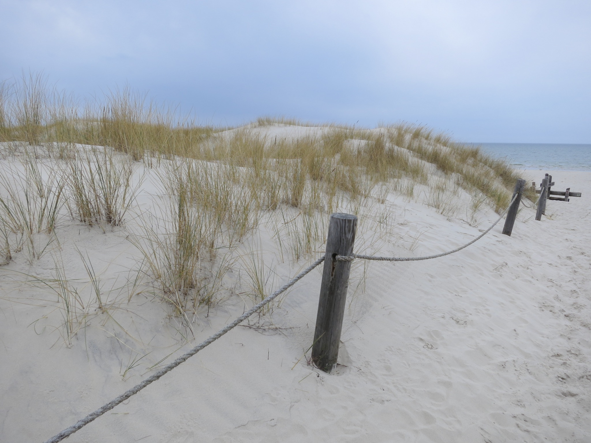 Path leading to the Baltic Sea on the Łackca Sand Dune In Słowiński National Park