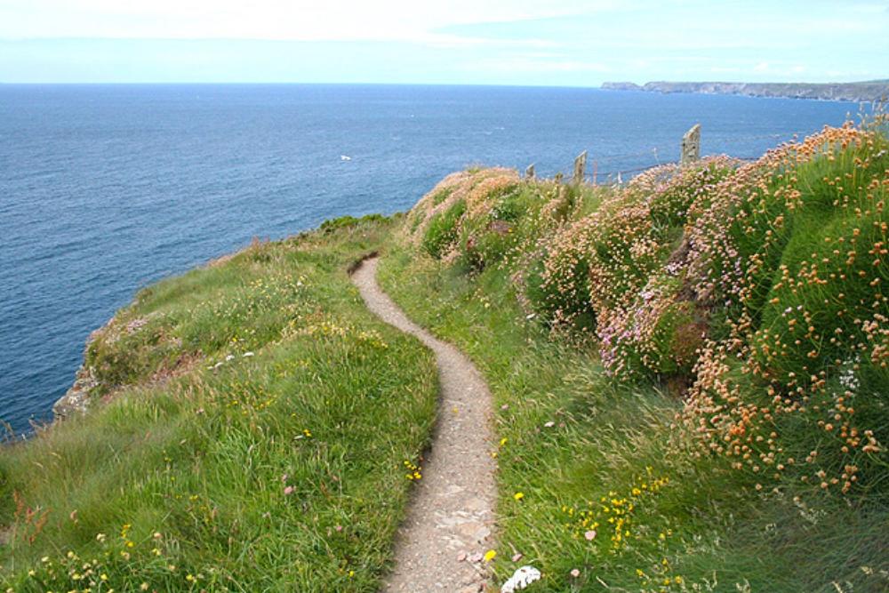 St_Endellion,_coast_path_near_Port_Gaverne_1_-_geograph.org.uk_-_850866.jpg