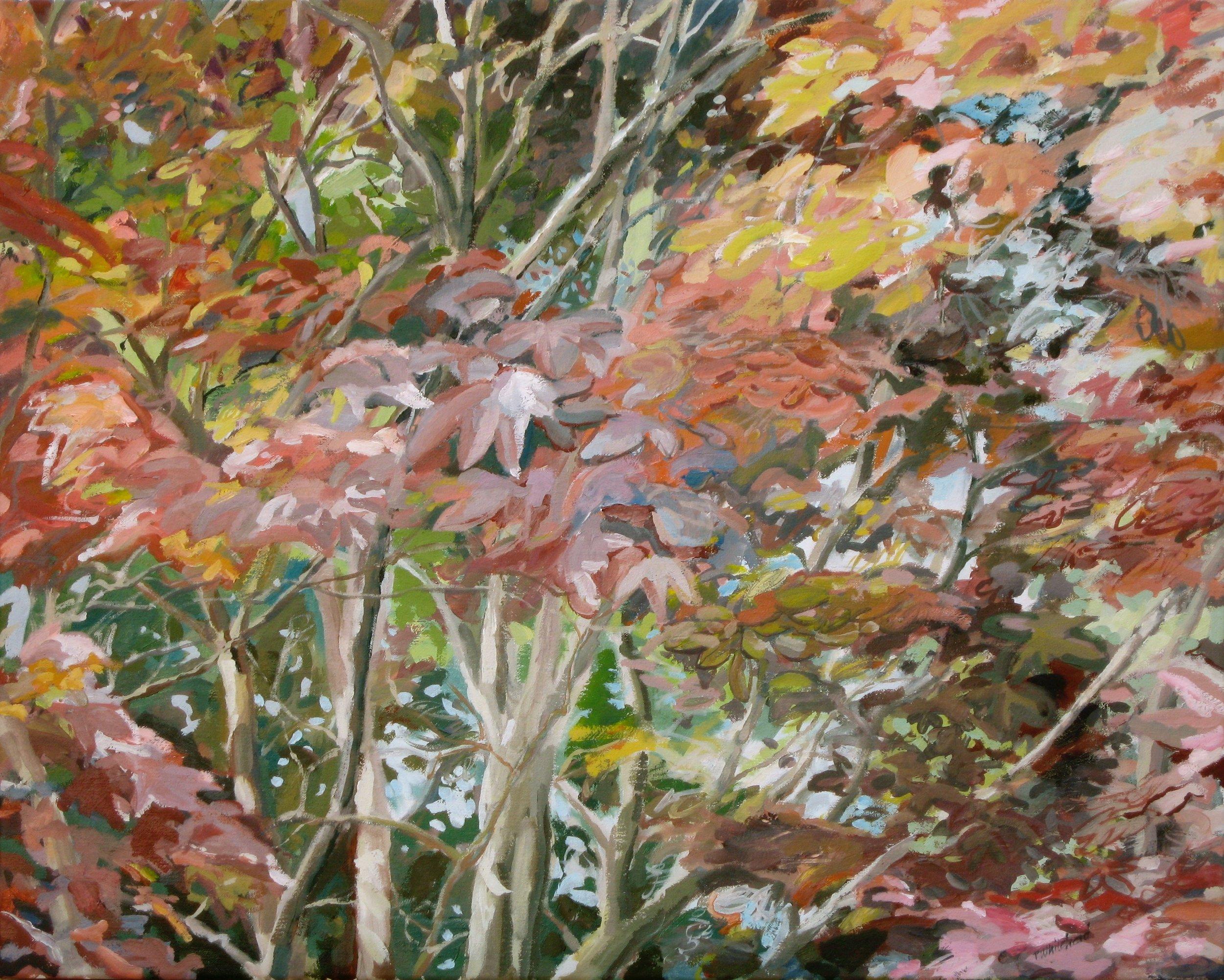 "Autumn Branches, 30 x 24"", Oil"