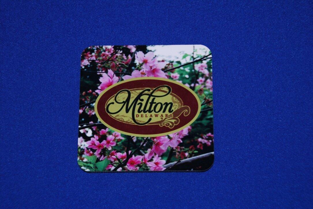 Milton coaster