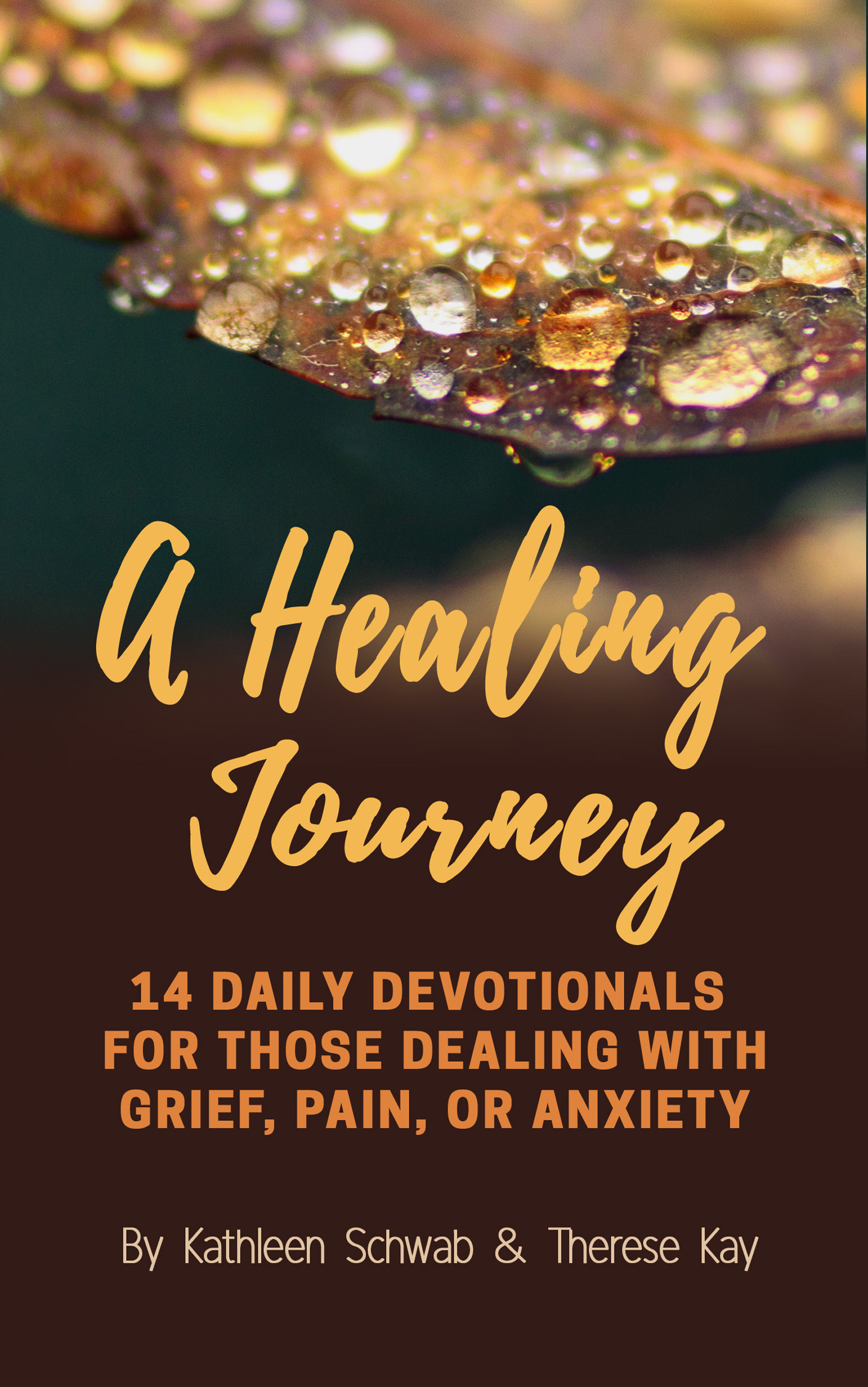 Check out :    A Healing Journey: 14 Daily Devotionals for Those Dealing with Grief, Pain, Or Anxiety      Only $0.99 on Amazon!