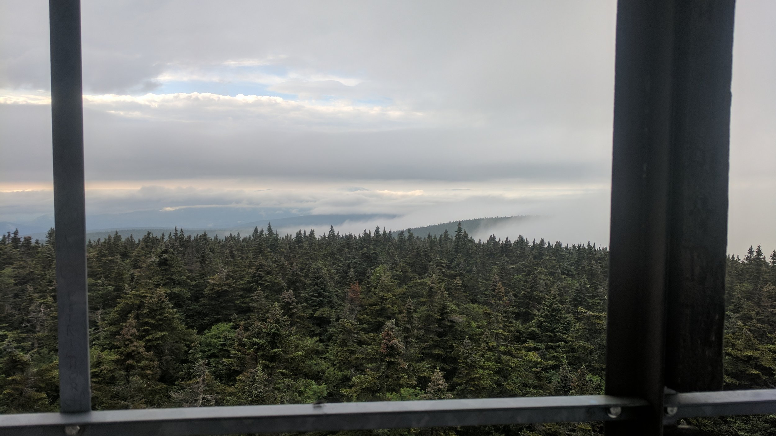 View from the fire tower.
