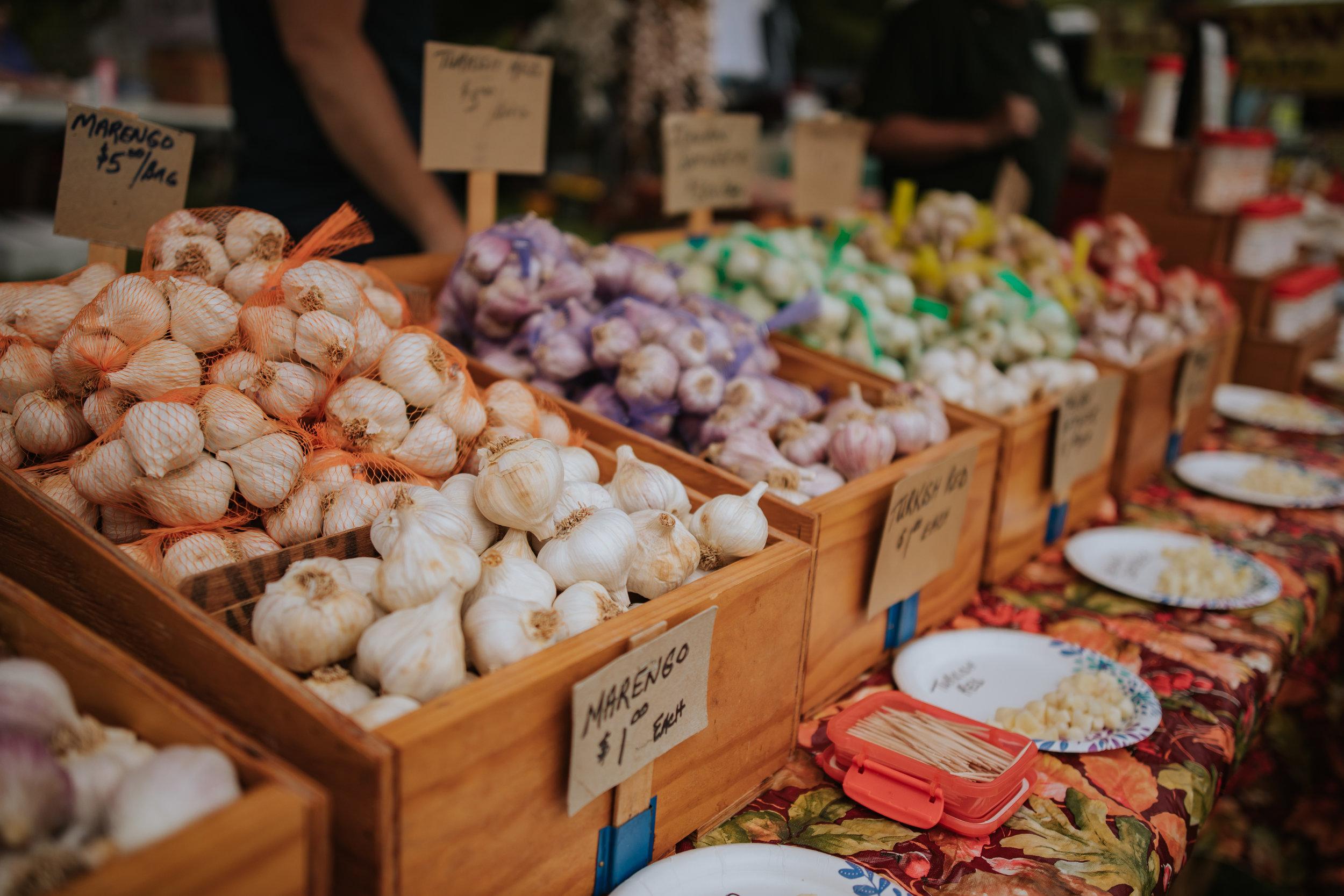 Garlicfest-0073.jpg