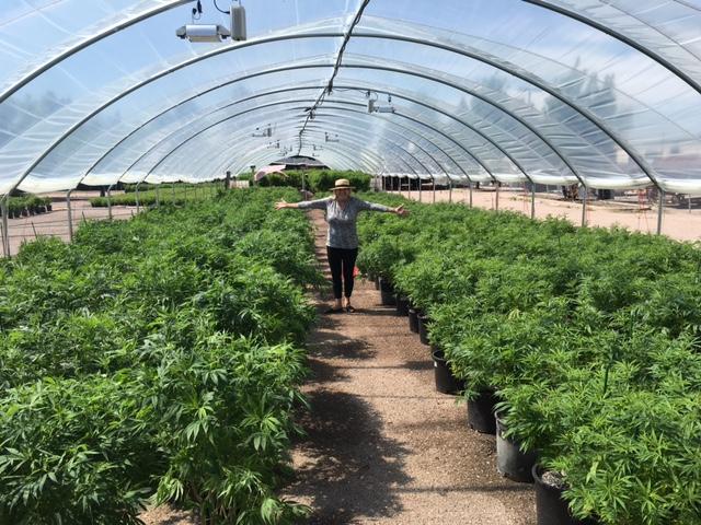 Founder & Creator Miriam Novalle Exploring the indoor hemp gardens in Colorado