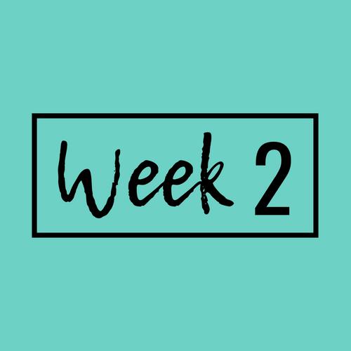 Week 2-min.png