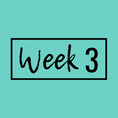 Week 3-min.png