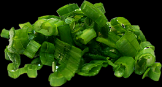 scallion.png