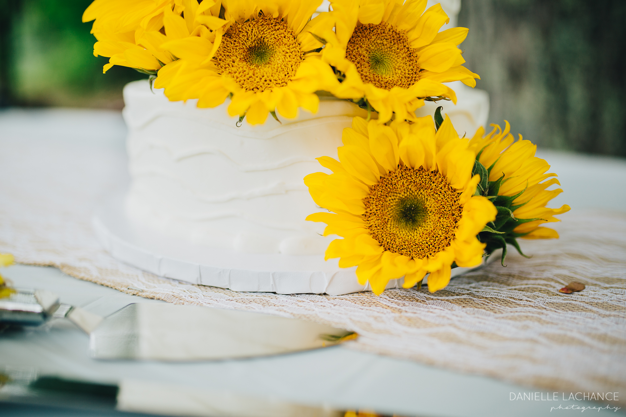 maine-wedding-photographer-details-cake-southern-maine-sunflowers.jpg