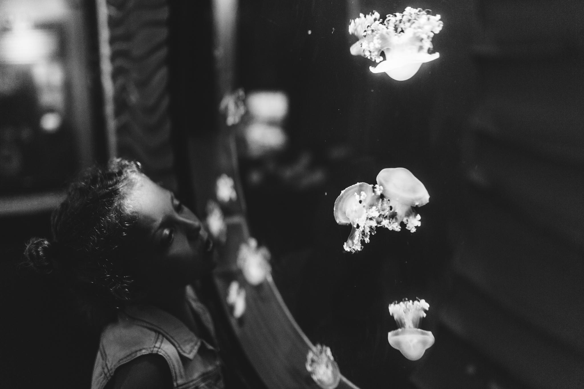 maine-family-photographer-mystic-ct-aquarium-13.jpg