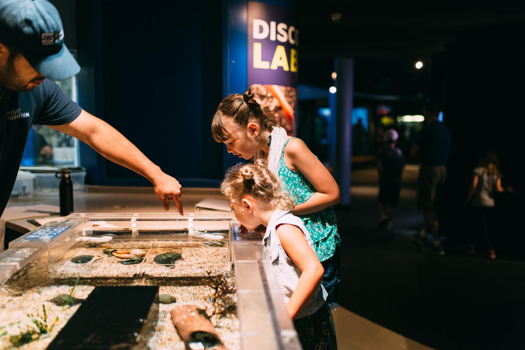 maine-family-photographer-mystic-ct-aquarium-25.jpg