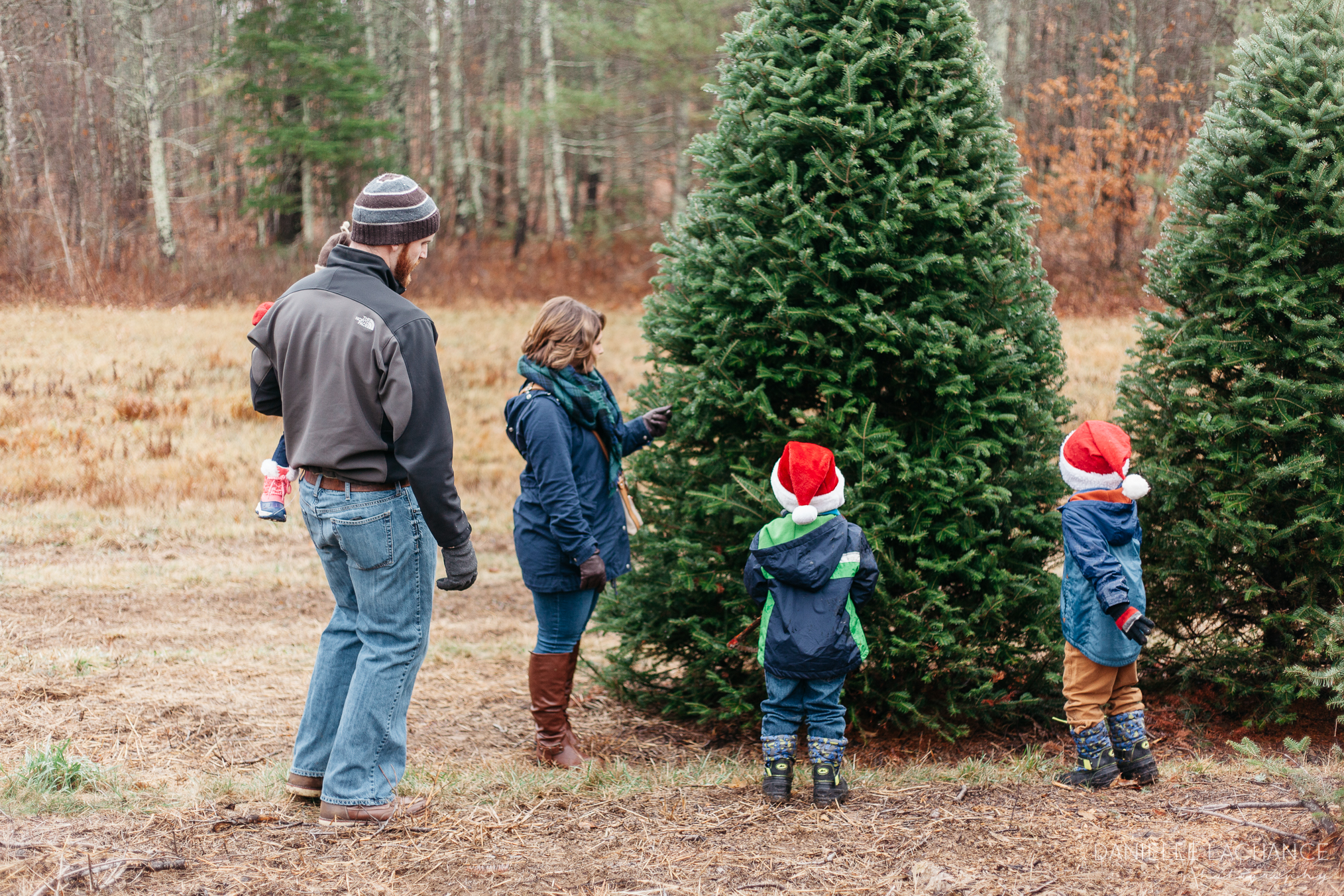 maine-tree-cutting-family-photographer-10.jpg